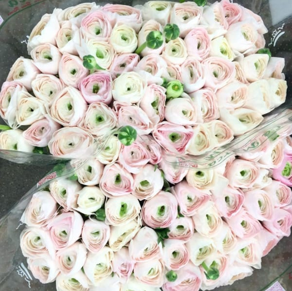 New-Covent-Garden-Flower-Market-Instagram-DG-Wholesale-Flowers-Hanoi-Cloni-Ranunculus