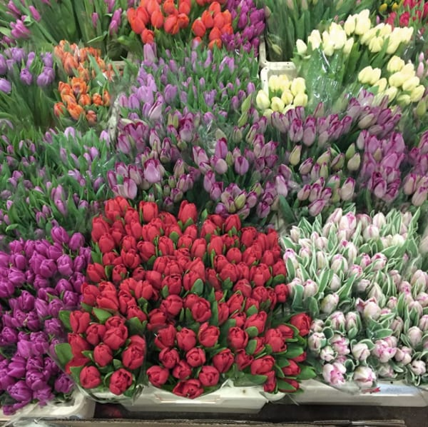 New-Covent-Garden-Flower-Market-Instagram-Dennis-Edwards-Flowers-Tulips