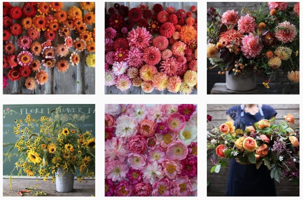 Floret-Instagram
