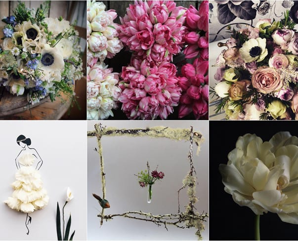 #UnderTheFloralSpell : January 2016 – Winners & Runners-Up