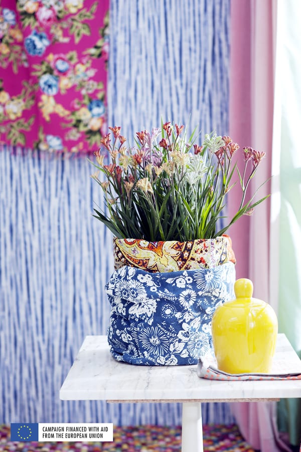 Blooming-Tropical-Plants-Houseplant-of-the-Month-May-2016-Flowerona-4