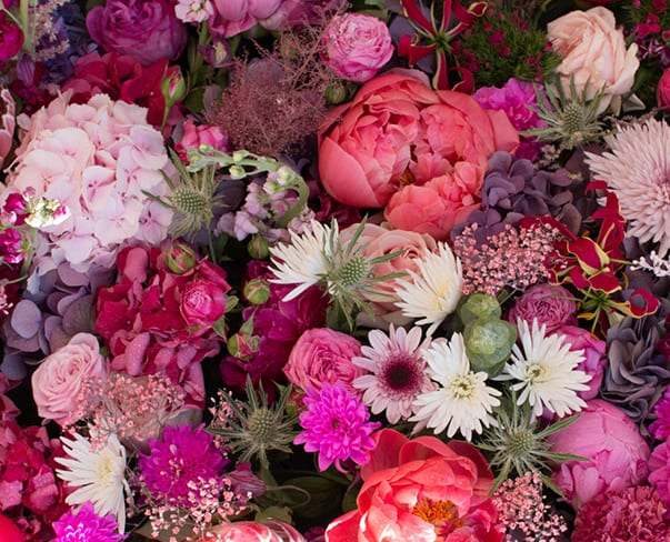 Chelsea in Bloom 2016 | Images of the beautiful floral-inspired displays