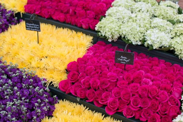 RHS Chelsea Flower Show 2016 Marks & Spencer M&S Flowerona-32