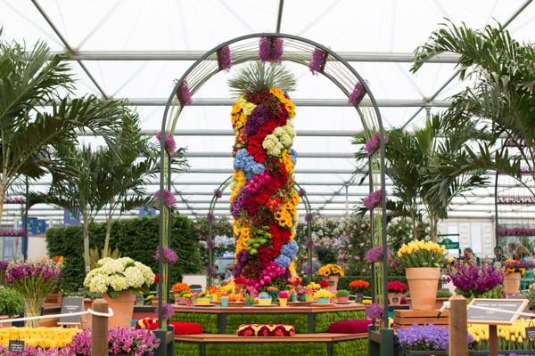 RHS Chelsea Flower Show 2016 Marks & Spencer M&S Flowerona-33