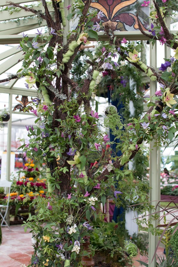 RHS Chelsea Flower Show 2016 NAFAS Three Counties and South Wales Area Flowerona-5