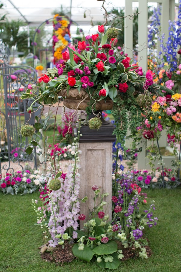 RHS Chelsea Flower Show 2016 NAFAS Three Counties and South Wales Area Flowerona-6