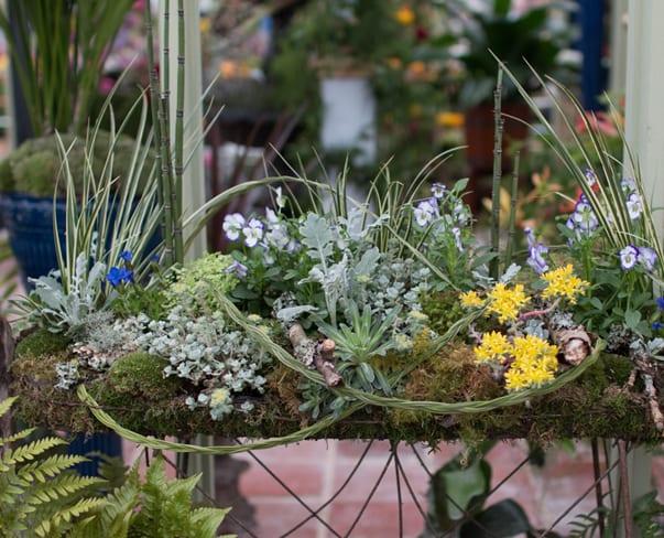 RHS Chelsea Flower Show 2016 | NAFAS Exhibit