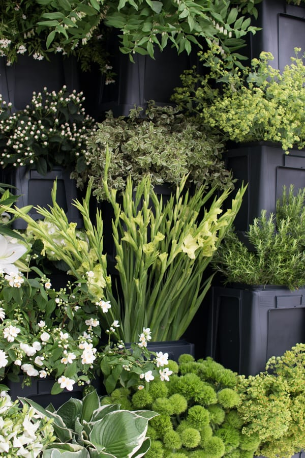 RHS Chelsea Flower Show 2016 New Covent Garden Flower Market Exhibit Flowerona-10