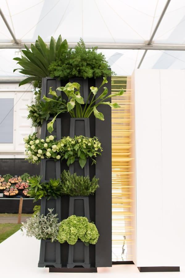 RHS Chelsea Flower Show 2016 New Covent Garden Flower Market Exhibit Flowerona-6