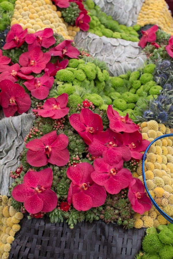 RHS Chelsea Flower Show 2016 RHS Chelsea Floristry College of the Year Bath College Flowerona-3