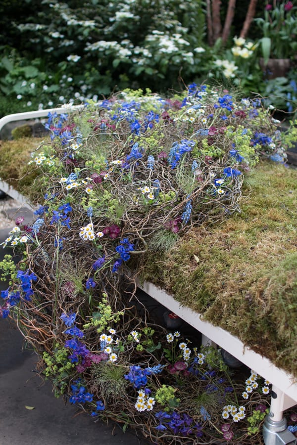 RHS Chelsea Flower Show 2016 The Garden Bed Asda Florist Alison Doxey Stephen Welch Artisan Garden Flowerona-1