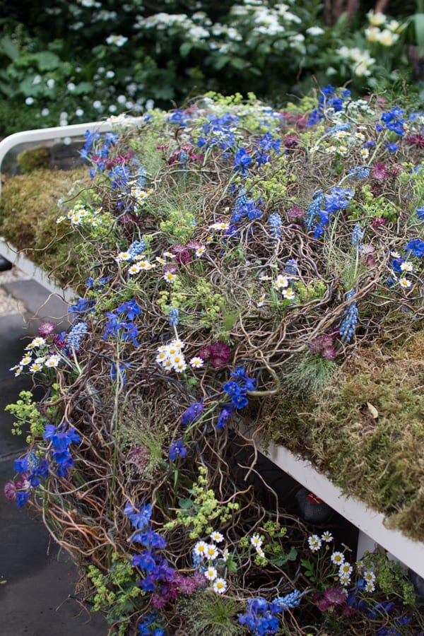 RHS Chelsea Flower Show 2016 The Garden Bed Asda Florist Alison Doxey Stephen Welch Artisan Garden Flowerona-2