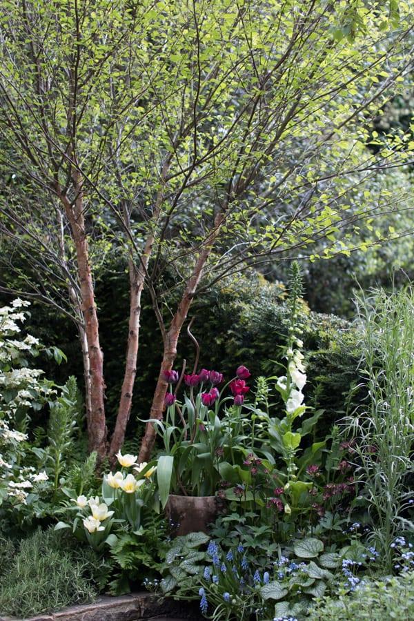 RHS Chelsea Flower Show 2016 The Garden Bed Asda Florist Alison Doxey Stephen Welch Artisan Garden Flowerona-8