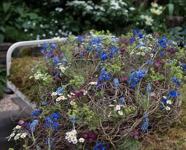 RHS Chelsea Flower Show 2016 | Artisan Garden : The Garden Bed by Alison Doxey & Stephen Welch
