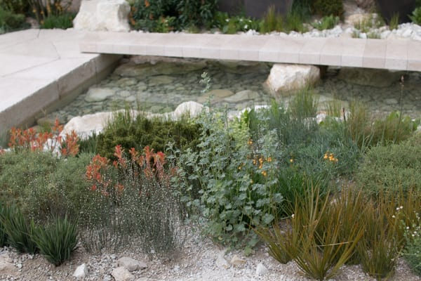 RHS Chelsea Flower Show 2016 The Telegraph Garden Andy Sturgeon Best Show Garden Flowerona-7
