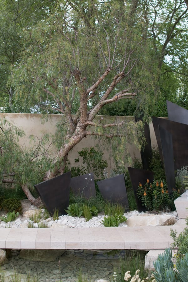 RHS Chelsea Flower Show 2016 The Telegraph Garden Andy Sturgeon Best Show Garden Flowerona-8