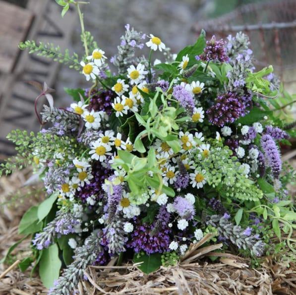 Eden-Blooms-Poldark-Flowers-Flowerona-10