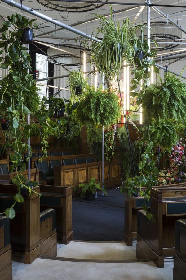 Jungle-is-Massive-Nik-Southern-Grace-&-Thorn-Flowerona--2