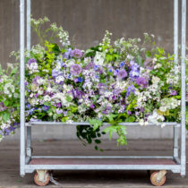 The-Flower-Appreciation-Society-mantlepiece-feature