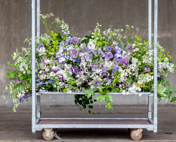 British Flowers Week 2016 – Summer Foliage : Interview with The Flower Appreciation Society