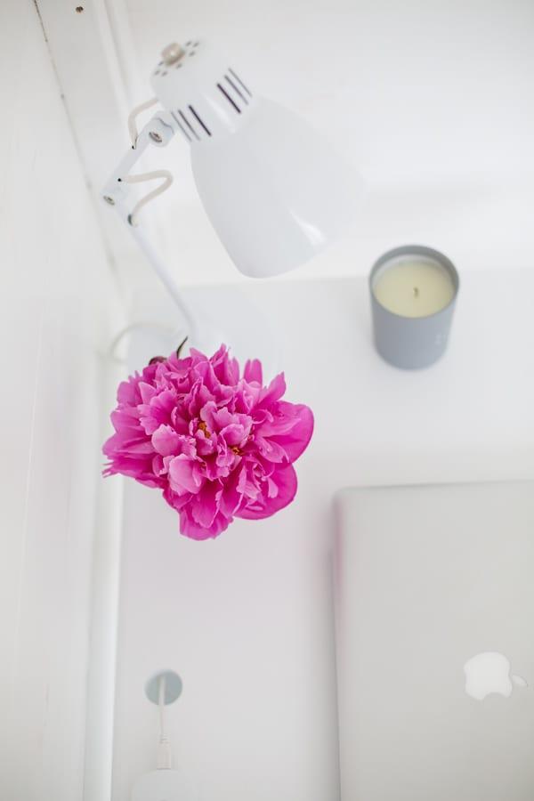 White & Grey Garden Office Flowerona-13