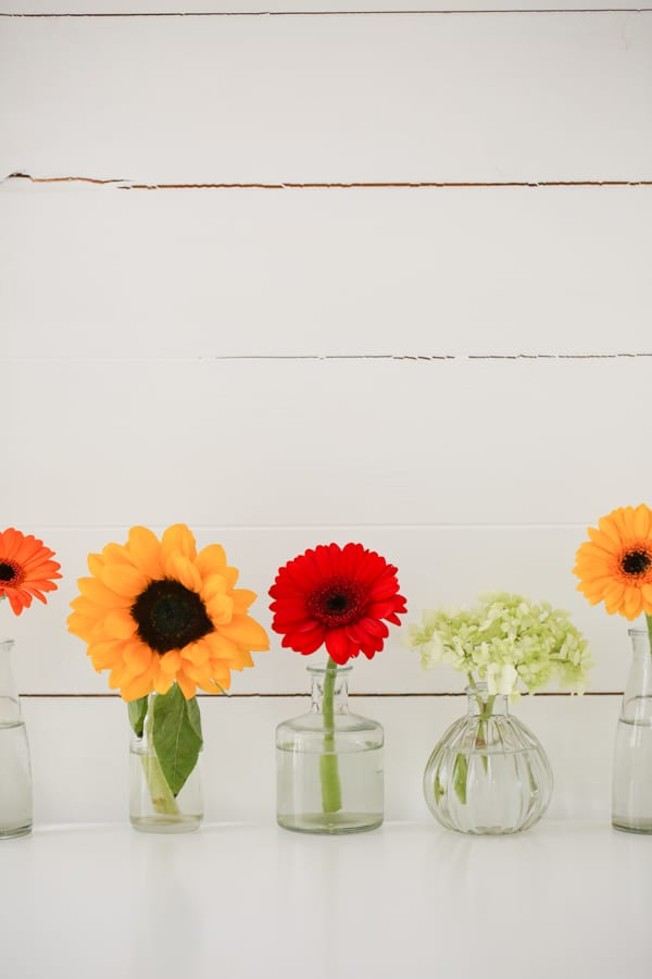 Marks & Spencer Beautiful Bloom Flowerona-10