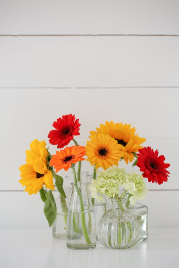 Marks & Spencer Beautiful Bloom Flowerona-11