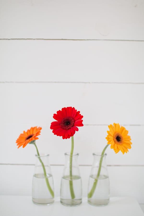 Marks-&-Spencer-Beautiful-Bloom-Flowerona-21