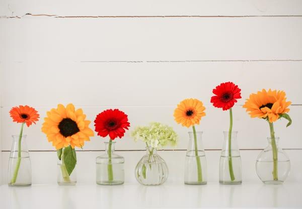 Marks & Spencer Beautiful Bloom Flowerona-9