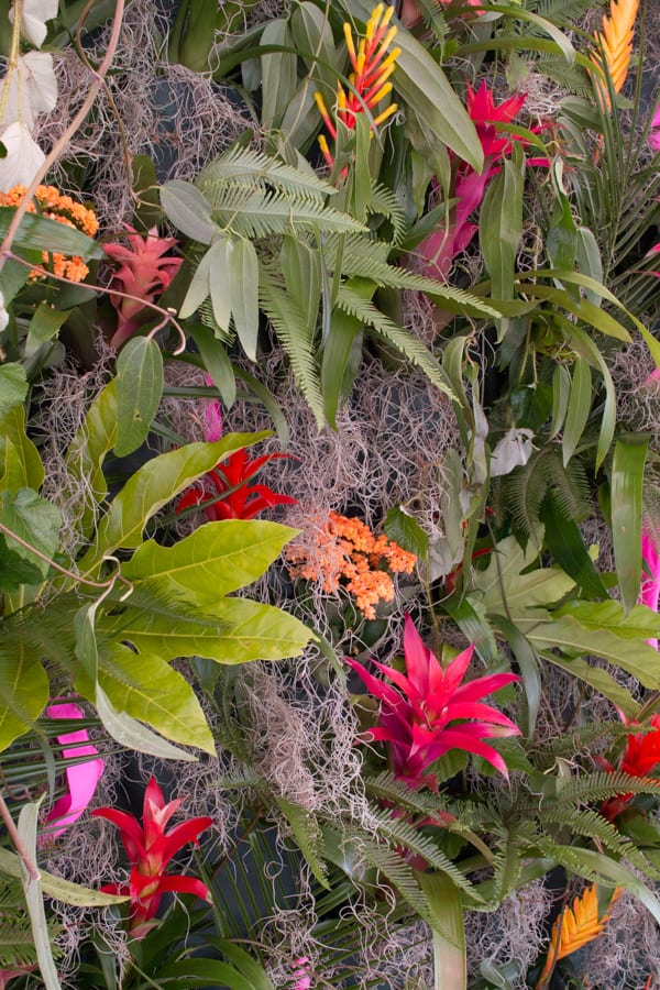 RHS Hampton Court Palace Flower Show 2016 Academy of Floristry Flowerona-4