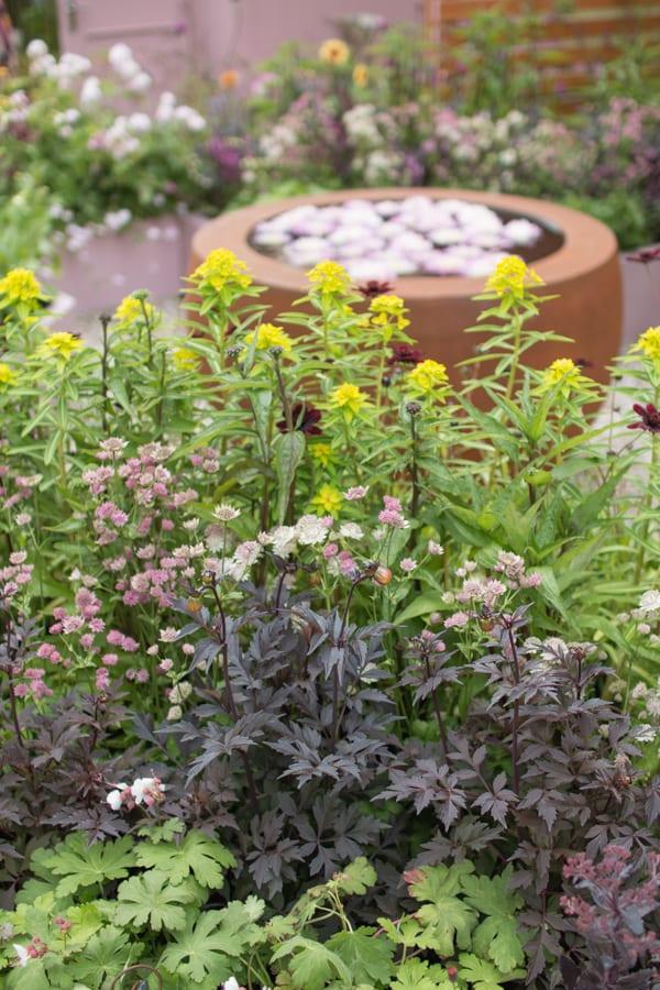 RHS Hampton Court Palace Flower Show 2016 Katie's Garden Katie's Lymphoedema Fund Flowerona 1-3