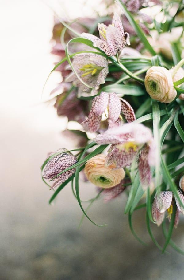 Chikae-O.H.-Sarah-Winward-Film-Photography-Flowerona-10