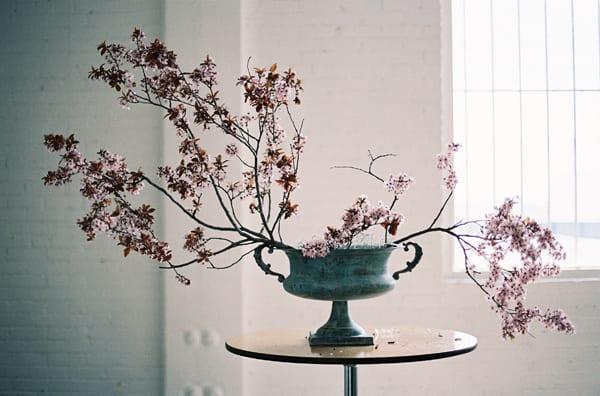Chikae-O.H.-Sarah-Winward-Film-Photography-Flowerona-11