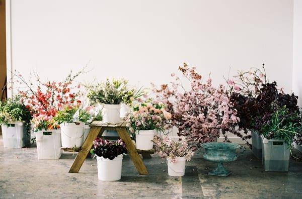 Chikae-O.H.-Sarah-Winward-Film-Photography-Flowerona-8
