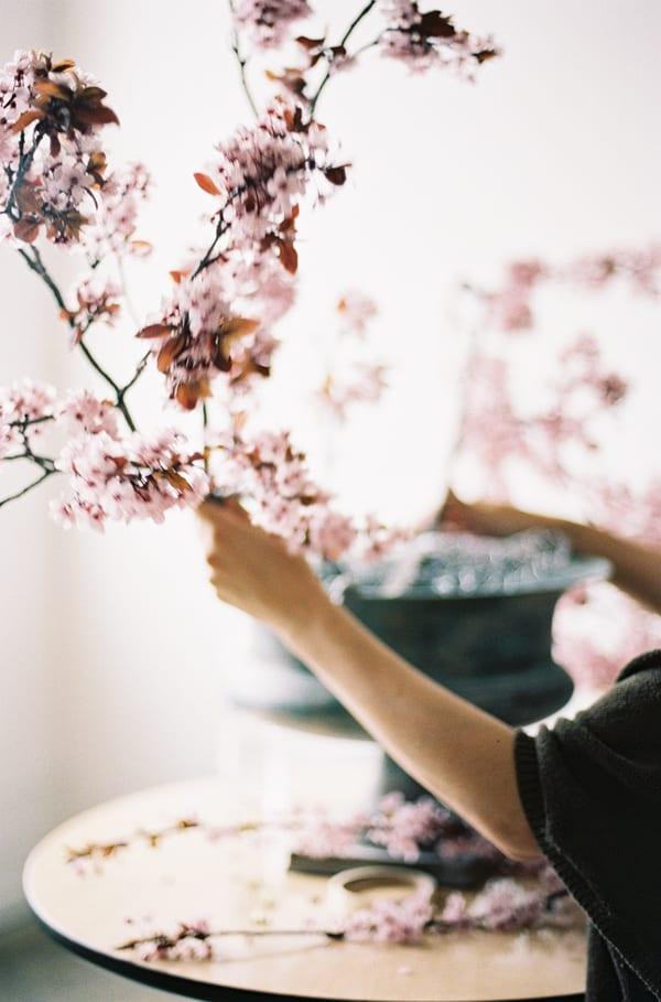 Chikae-O.H.-Sarah-Winward-Film-Photography-Flowerona-9
