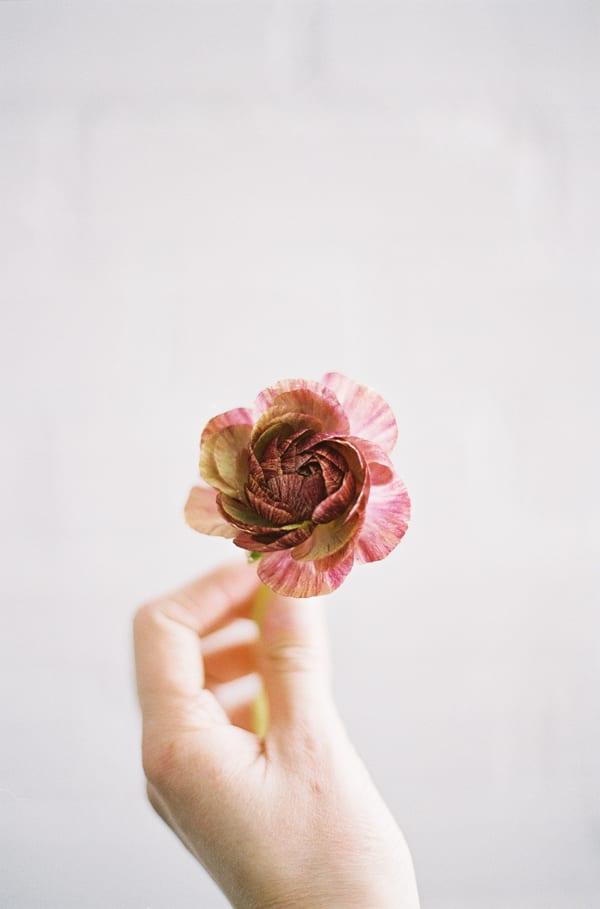 Chikae-O.H._Sarah-Winward-Film-Photography-Flowerona-17