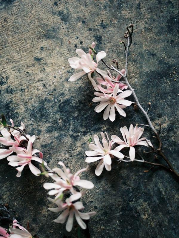 Chikae-Okishima-Howland-kate-osborne-photography-Flowerona-13