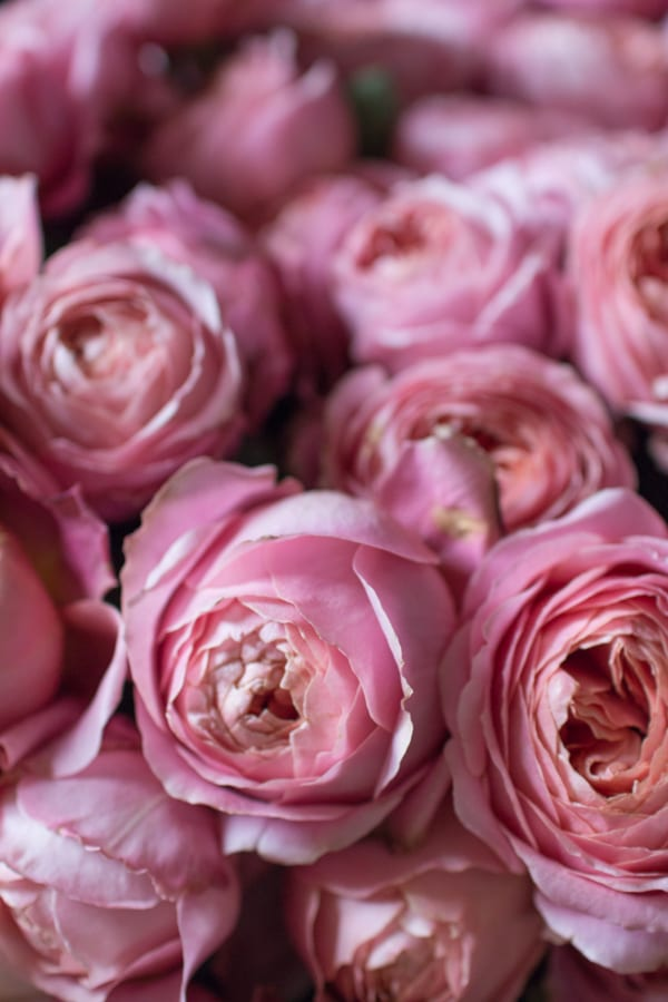 Tallulah Rose Wedding Flower Course Retreat Rona Wheeldon Flowerona-13