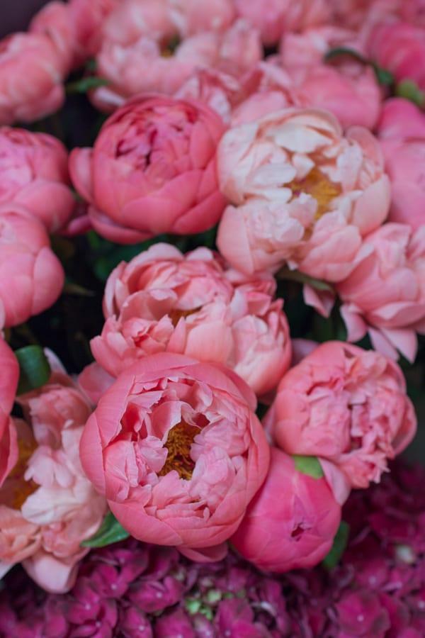Tallulah Rose Wedding Flower Course Retreat Rona Wheeldon Flowerona-2