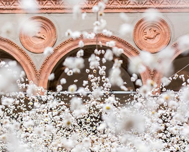 White 2016 – A Floral Installation by Rebecca Louise Law