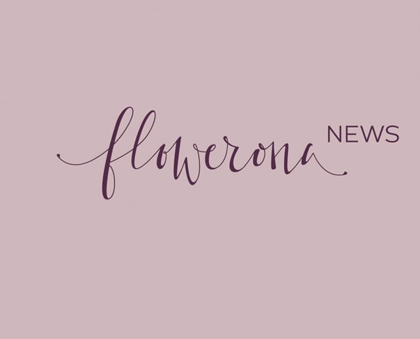 Flowerona News – January 2017 | flowerona TV