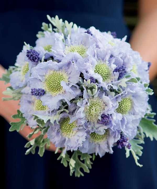 Paula-Pryke-Book-Floristry-Now-Flowerona--photo-credit-to-Tim-Winter