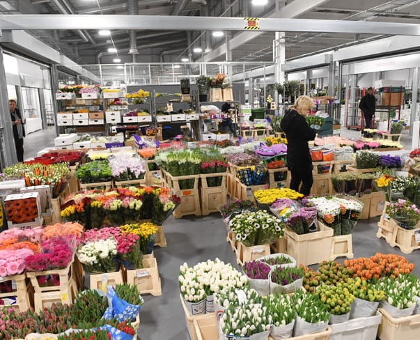 The Brand New Flower Market at New Covent Garden Market | The Opening Day