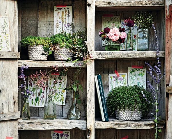 Book Review of Botanical Style by Selina Lake