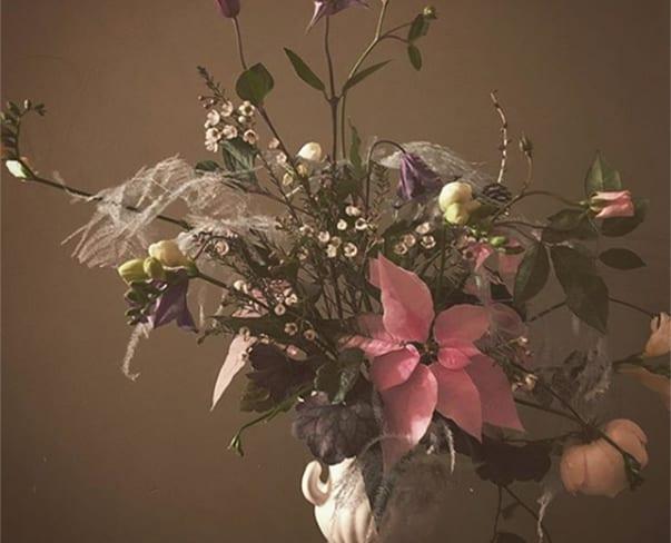 National Poinsettia Day | #UnderThePoinsettiaSpell Winner