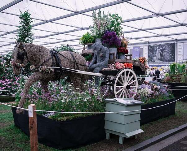 RHS Chelsea Flower Show 2018 | Going to Market by Flowers from the Farm