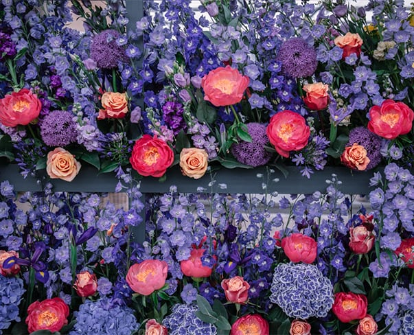 RHS Chelsea Flower Show 2018 | The Floral Market by Marks & Spencer