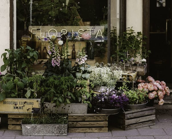 The Flowerona List | Floral Inspiration & Beyond | 09.09.18