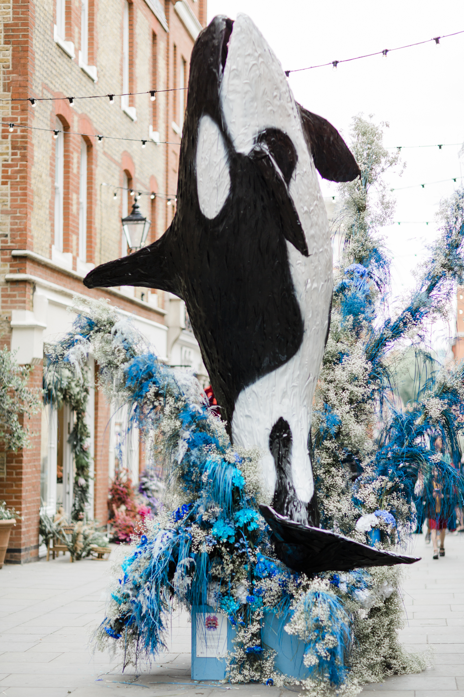 Orca Whale by All for Love London for Chelsea in Bloom 2019