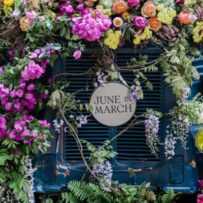June in March   RHS Chelsea Flower Show 2019